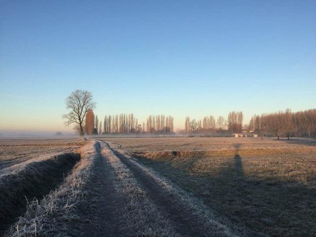 Pianura inverno - foto Fabrizio Tassi